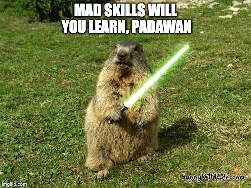 Jedi master marmot teaches mad skills